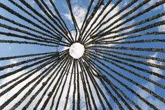 El abedul abre una sesión el fondo del cielo Imagenes de archivo