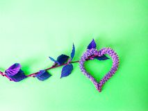 El abedul florece los pendientes del flor bajo la forma de corazón imagen de archivo libre de regalías