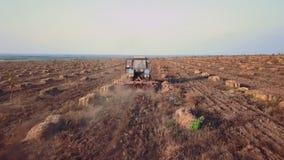 El abejón aéreo el tractor ara el campo en una granja de la nuez y del avellano-árbol metrajes