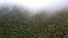 El abejón muestra el río de la montaña debajo de la niebla que cae sobre el barranco