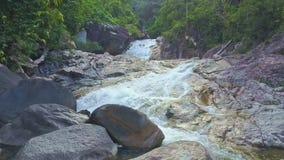 El abejón mueve cierre rápido a lo largo del río de la montaña con los rápidos