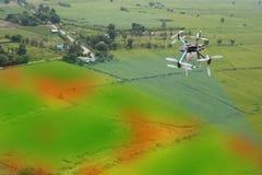 El abejón para la agricultura, uso del abejón para los diversos campos le gusta el análisis de la investigación, seguridad, resca Imágenes de archivo libres de regalías