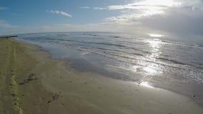 El abejón que vuela sobre la playa arenosa, mar agita lavarse en tierra, tiempo soleado, Chipre metrajes