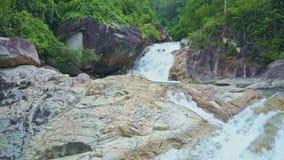 El abejón se baja a lo largo del río asombroso con las cascadas