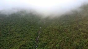 El abejón sube sobre el bosque tropical con el río y la niebla distante
