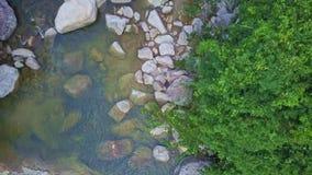 El abejón vuela cerca sobre el río estrecho limpio de la montaña