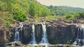 El abejón vuela de arriba a abajo a lo largo de las cascadas estrechas