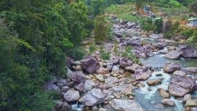 El abejón vuela de cerca a los rápidos rocosos del río entre bosque