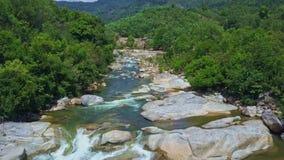 El abejón vuela encima del río estrecho con los bancos rocosos de los rápidos