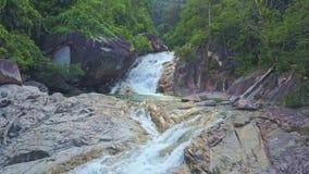 El abejón vuela a lo largo del río con la cascada que fluye en el lago