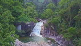 El abejón vuela sobre la cascada tropical hermosa con el lago