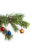 El abeto de la Navidad aisló Fotos de archivo libres de regalías