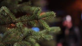 El abeto de la Navidad ramifica en la iluminación del bokeh de la tarde del fondo almacen de metraje de vídeo