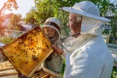 El abuelo experimentado del apicultor enseña a su nieto que cuida para las abejas Apicultura El concepto de transferencia de Foto de archivo libre de regalías