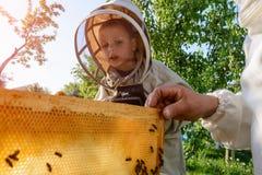 El abuelo experimentado del apicultor enseña a su nieto que cuida para las abejas Apicultura La transferencia de la experiencia Fotografía de archivo libre de regalías
