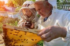 El abuelo experimentado del apicultor enseña a su nieto que cuida para las abejas Apicultura La transferencia de la experiencia Foto de archivo