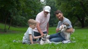 El abuelo, el padre y el hijo y dos perros levantan el terrier de Russel que miente en la hierba verde en el parque del verano Fa almacen de metraje de vídeo