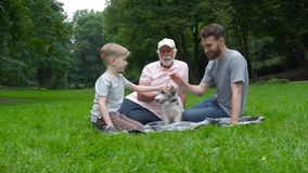 El abuelo, el padre y el hijo y dos perros levantan el terrier de Russel que miente en la hierba verde en el parque del verano Fa metrajes