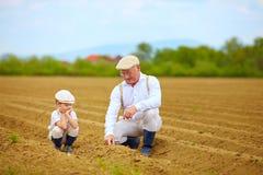 El abuelo que explica a su nieto las plantas de la manera es crece Imágenes de archivo libres de regalías