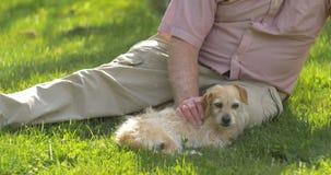 El abuelo retiró al varón adulto mayor maduro mayor en el retiro 60s con el perro metrajes