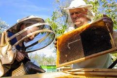 El abuelo y el nieto del apicultor examinan una colmena de abejas Imagen de archivo libre de regalías