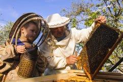 El abuelo y el nieto del apicultor examinan una colmena de abejas Imagen de archivo