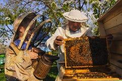 El abuelo y el nieto del apicultor examinan una colmena de abejas Imágenes de archivo libres de regalías