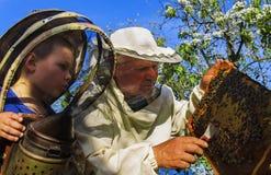 El abuelo y el nieto del apicultor examinan una colmena de abejas Fotos de archivo libres de regalías