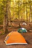 El acampar Imagenes de archivo