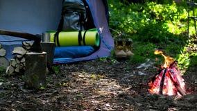 El acampar con el fuego en la noche en desierto almacen de video