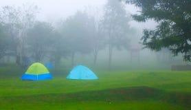 El acampar en el bosque por el río Imagenes de archivo