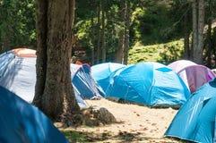 El acampar en el bosque Imagen de archivo libre de regalías