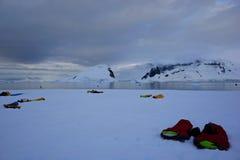 El acampar en la Antártida Imagen de archivo