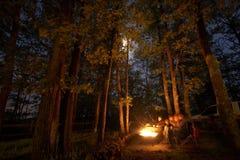 El acampar en la noche con un fuego Fotos de archivo