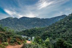 El acampar y el caminar en bosques verdes imagen de archivo