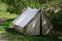 El acampar y tienda debajo del bosque del pino en puesta del sol Fotografía de archivo libre de regalías