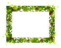 El acebo rústico sale del marco 2 de la Navidad Imagen de archivo libre de regalías