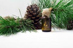 El aceite del cedro en una botella de cristal en un fondo de madera blanco Fuente de ácidos grasos esenciales para la nutrición s Fotografía de archivo libre de regalías
