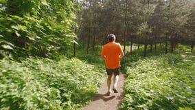 El activar de funcionamiento del hombre adulto al aire libre en una naturaleza del bosque en un rastro del bosque y goce de él y  almacen de metraje de vídeo