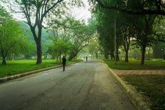 El activar que camina de la gente en un camino dentro de un parque en una mañana del invierno Foto de archivo