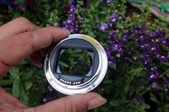El adaptador de la lente para la macro con las flores imagen de archivo
