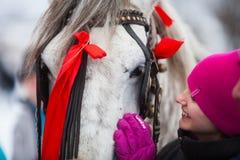 El adolescente acaricia un caballo Imágenes de archivo libres de regalías