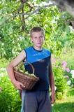 El adolescente con una cesta de manzanas en un jardín. Imagen de archivo libre de regalías