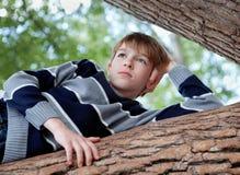 El adolescente está en un árbol y los sueños, verano Foto de archivo