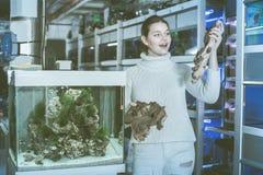 El adolescente femenino está sosteniendo la piedra arenisca amarillo-marrón grande para la aguamarina Imagen de archivo libre de regalías