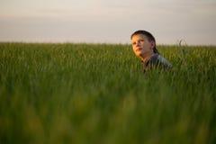 El adolescente miente en la hierba alta en la puesta del sol Fotos de archivo