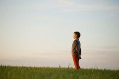 El adolescente se está colocando en la hierba alta en la puesta del sol Foto de archivo libre de regalías