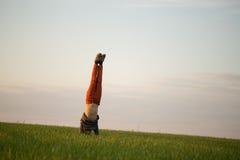 El adolescente se está colocando en la hierba alta en la puesta del sol Imagen de archivo