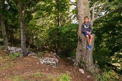 El adolescente se está sentando en un árbol alto Imagen de archivo