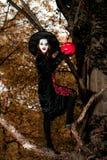 El adolescente se vistió en el traje de la bruja que se sentaba en el árbol Fotos de archivo libres de regalías